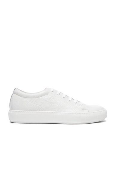 Adrian Grain Leather Sneakers