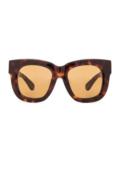 Acne Studios Library Sunglasses in Turtle