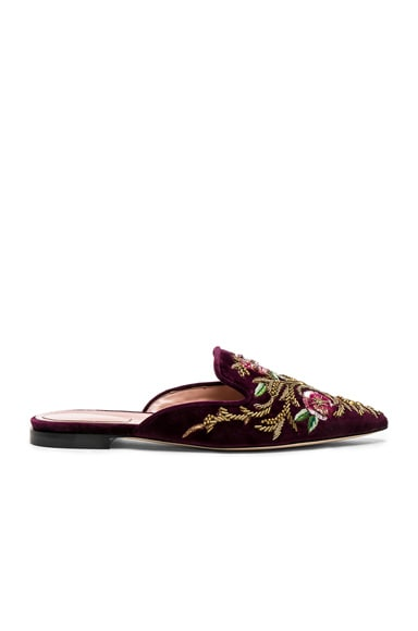 Velvet Embroidered Mules