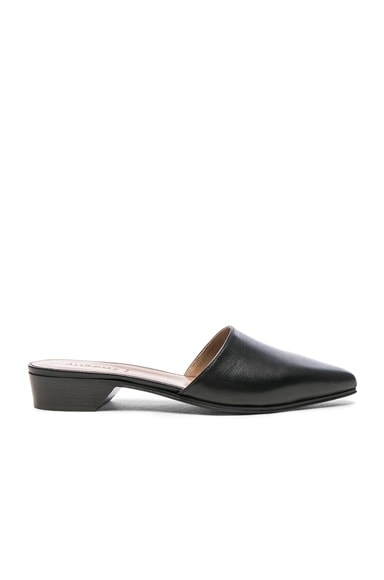 Pointy Leather Mules