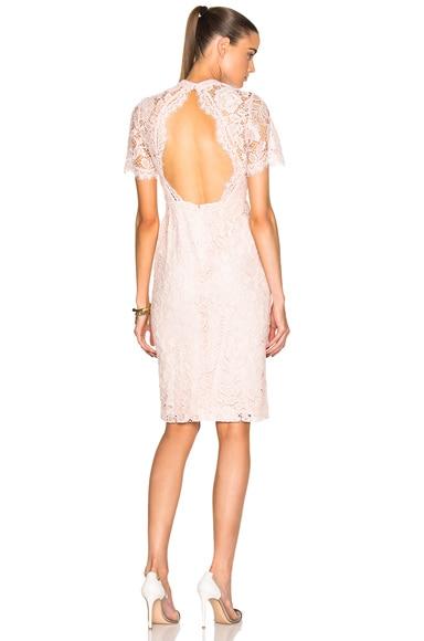 Alexis Ardella Dress in Blush Lace
