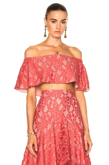 Alexis Taza Top in Salmon Lace