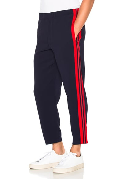 Alexander McQueen Trousers in Blue & Red