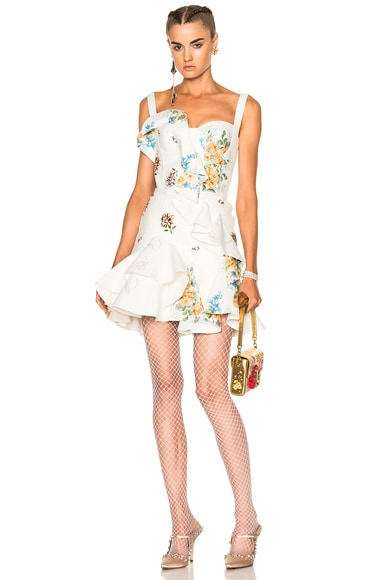 Alexander McQueen Leather Ruffle Dress in Ivory & Multi