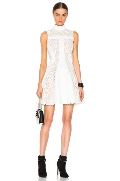 Alexander McQueen Broderie Dress in Ivory