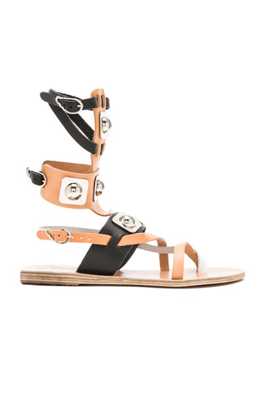 Ancient Greek Sandals x Peter Pilotto Leather Low Gladiator Sandals in Black, Natural & White