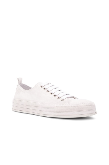 Ann Demeulemeester Sneakers in Off White