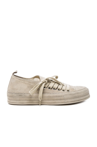 Ann Demeulemeester Suede Sneakers in Angora