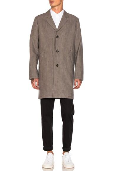 Tristan Coat