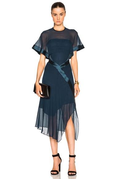Sheer Silk Dress
