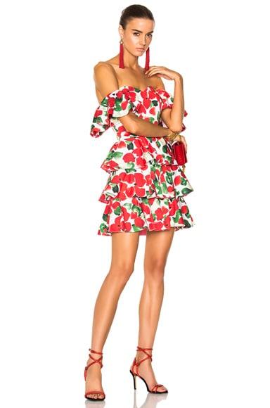 Irene Mini Dress