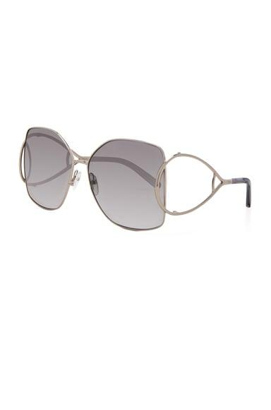 Jackson Sunglasses