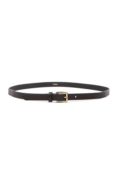 Chloe Mini Belt in Black