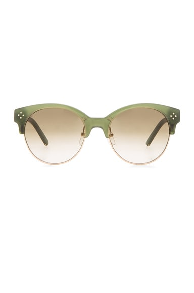Chloe Boxwood Sunglasses in Green
