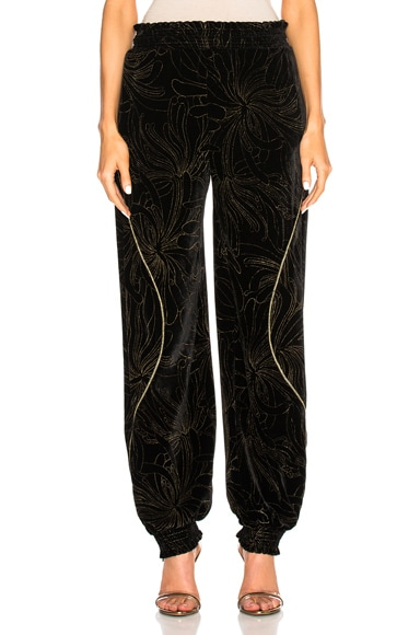 Gold Pigment Printed Velvet Sweatpants