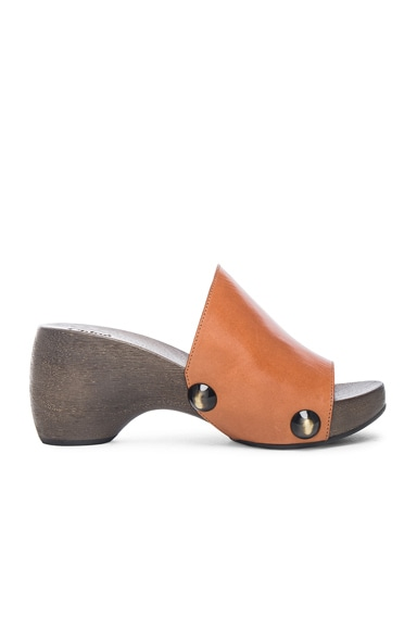 Chloe Wood Clog Leather Sandals in Marron Glace