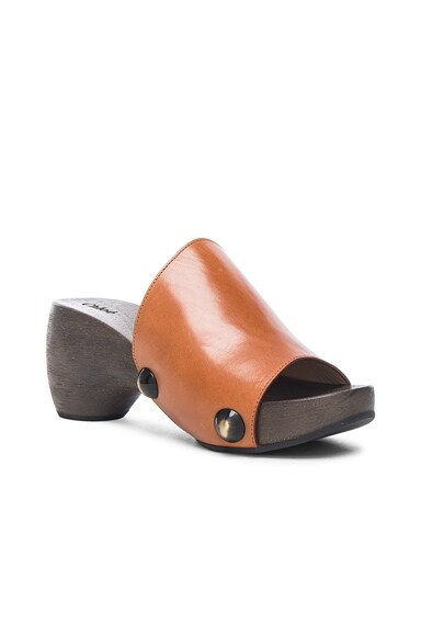 Wood Clog Leather Sandals
