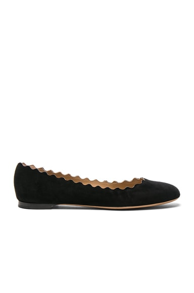Chloe Suede Lauren Flats in Black