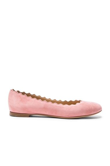 Chloe Suede Lauren Flats in Pink Grey