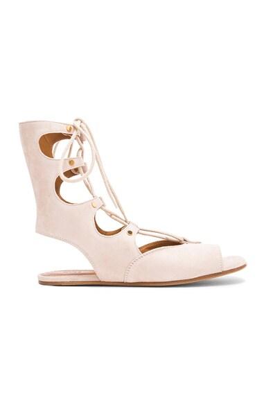 Flat Suede Gladiator Sandals