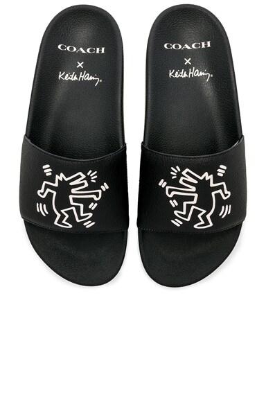 x Keith Haring Barking Dog Slides