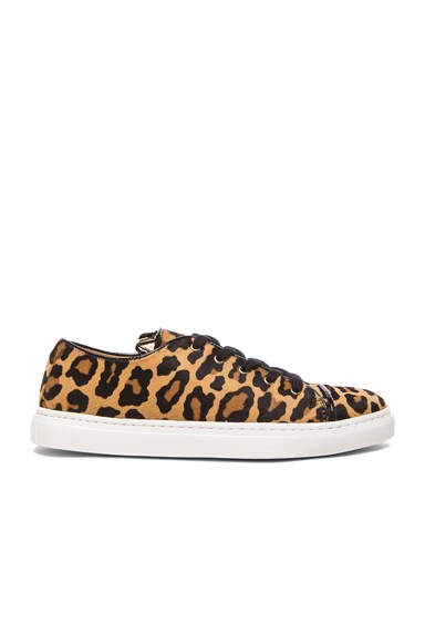 Charlotte Olympia Tomcat Low Top Pony Hair Sneakers in Leopard