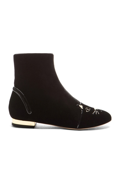 Charlotte Olympia Puss in Boots Velvet Booties in Black