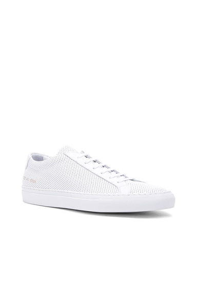 Original Perforated Leather Achilles Low
