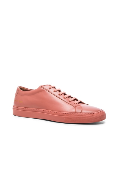 Common Projects Leather Original Achilles Low in Antique Rose