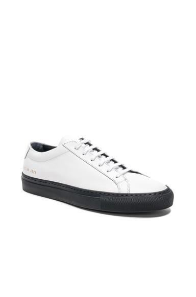 Leather Achilles