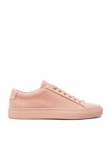 Common Projects Canvas Achilles Low in Blush
