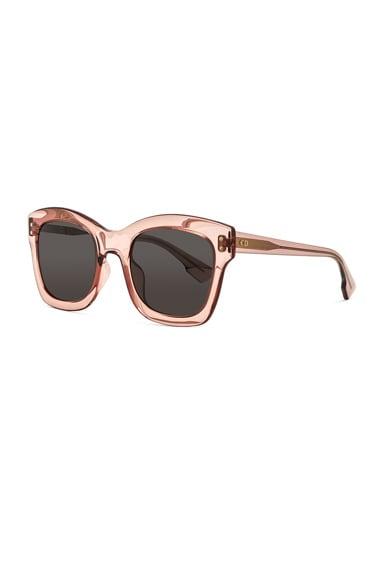 Izon Sunglasses