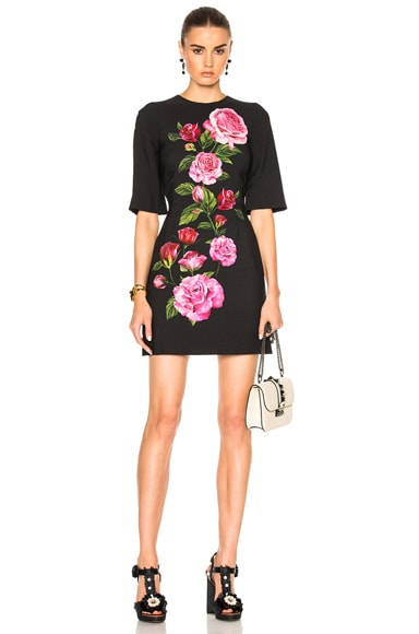 Dolce & Gabbana Cady Rose Print Mini Dress in Black