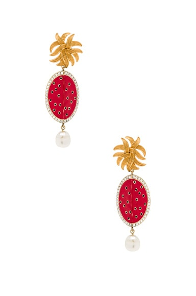 Dolce & Gabbana Red Oval Earrings in Multi
