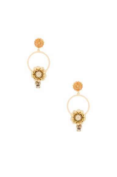 Dolce & Gabbana Flower Hoop Earrings in Gold