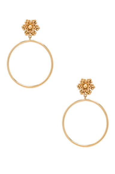 Dolce & Gabbana Hoop Earrings in Gold