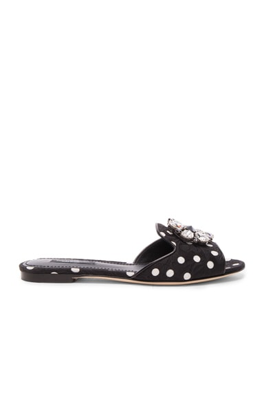 Dolce & Gabbana Flat Sandal in Black & White Polka Dot