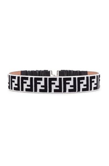 FF Printed Belt