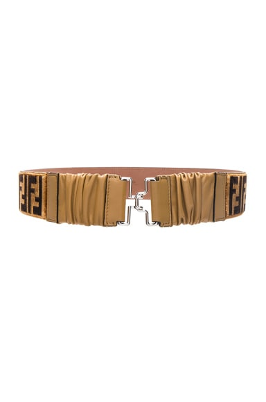 FF Printed Belt