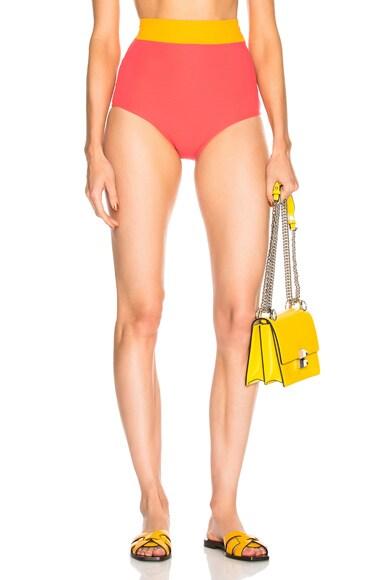 Arden Bikini Bottom