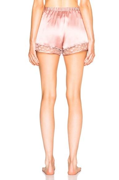 Star Lace Shorts