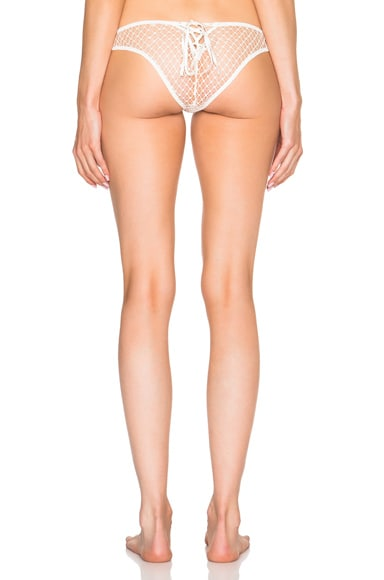 French Net Lace Tie Back Panty