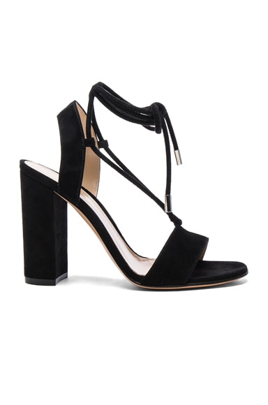 Gianvito Rossi Suede Lace Up Heels in Black