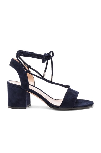 Gianvito Rossi Suede Lace Up Leather Sandals in Denim