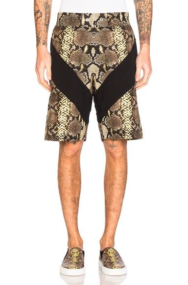 Snake Print Bermuda Shorts