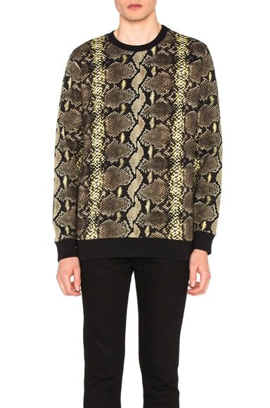 Givenchy Python & Stripe Sweatshirt in Black & Natural