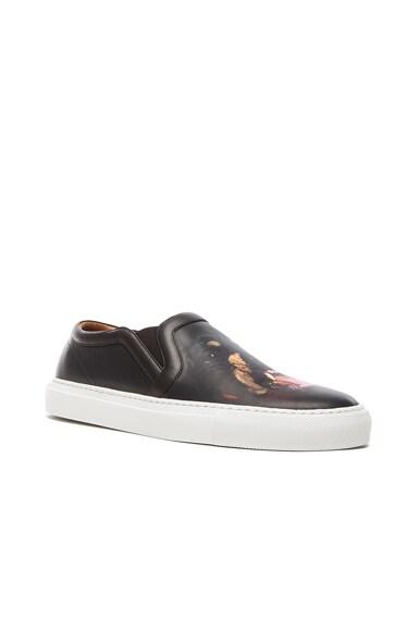 Printed Street Skate Leather Sneakers