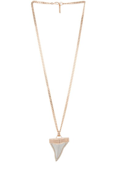 Shark Tooth Shiny Brass Necklace