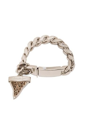Vintage Shark Tooth Bracelet
