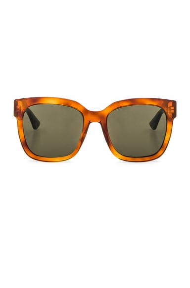Urban Pop Web Sunglasses